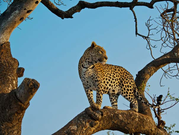 National Geographic - Traveler Magazine Photo Contest 2013 (7)