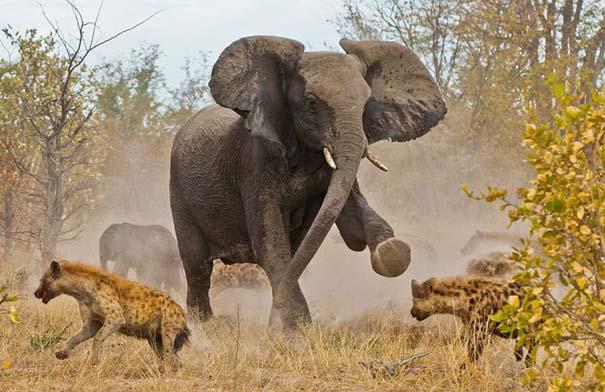 National Geographic - Traveler Magazine Photo Contest 2013 (12)