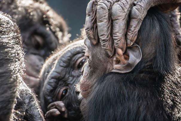 National Geographic - Traveler Magazine Photo Contest 2013 (30)