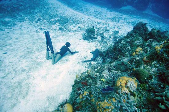 One Ocean One Breath (11)