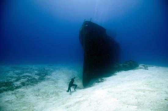 One Ocean One Breath (13)