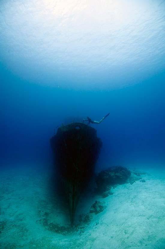 One Ocean One Breath (15)