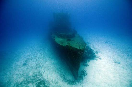 One Ocean One Breath (17)