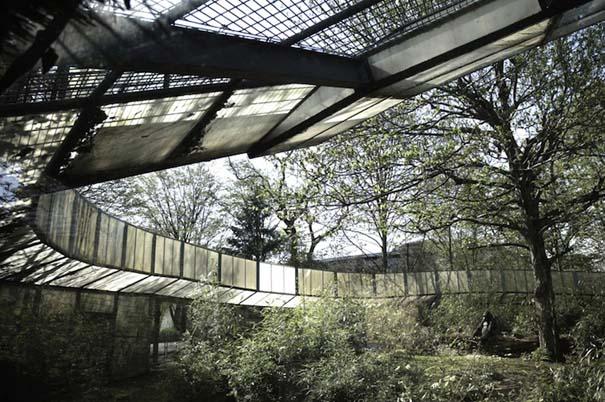 Η άλλη πλευρά των ζωολογικών κήπων... (8)