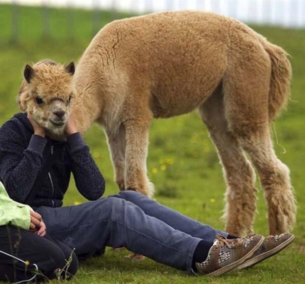 Ασυνήθιστες φωτογραφίες ζώων που χρειάζονται και δεύτερη ματιά (8)