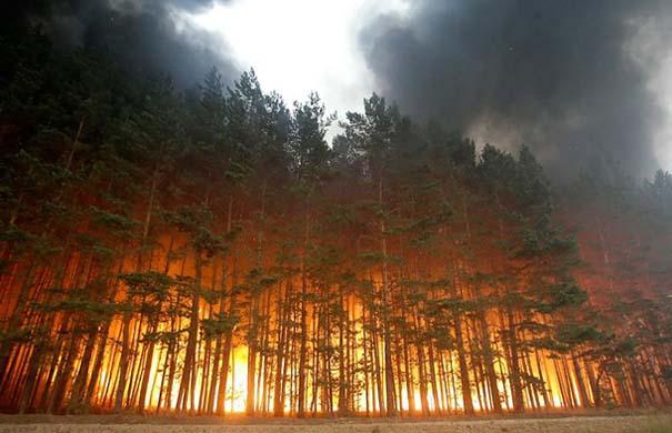 Εκπληκτικές φωτογραφίες που καταγράφουν την οργή της φύσης (4)