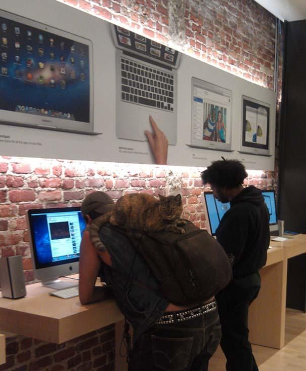 Παράξενα κι αστεία στα Apple Stores (2)