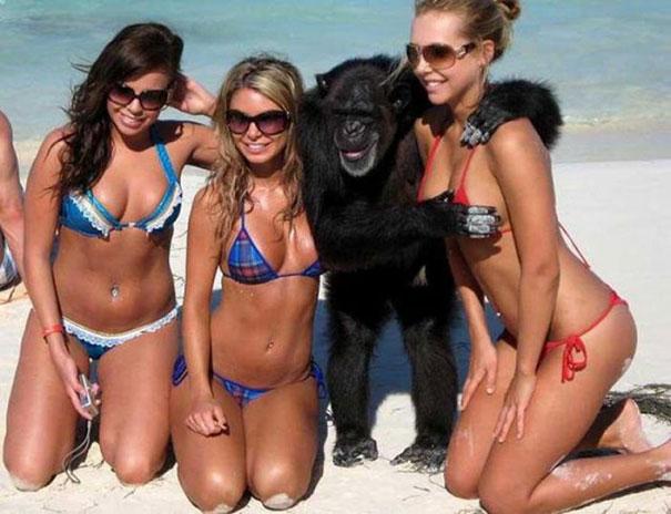 Παράξενα και τραγελαφικά στην παραλία (1)