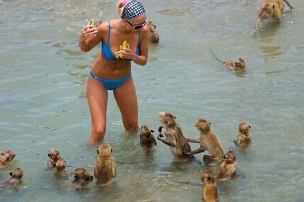Παράξενα και τραγελαφικά στην παραλία (30)
