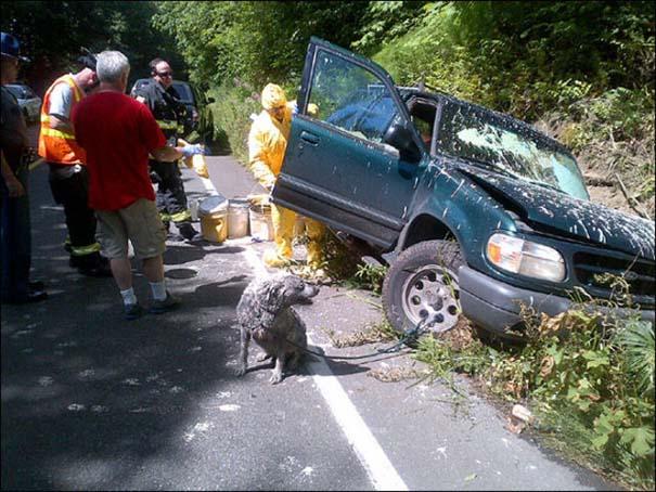Ένα περίεργο τροχαίο ατύχημα με αναπάντεχες συνέπειες (3)