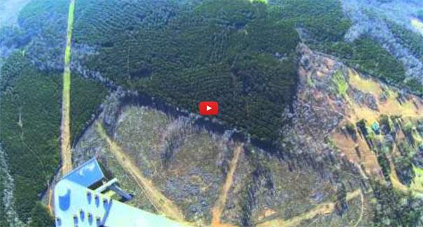 Πως είναι να πηδάς από έναν πύργο ύψους 600 μέτρων