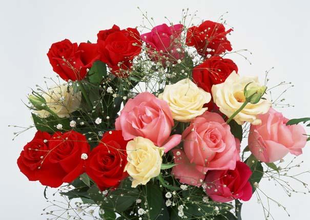 Τι συμβολίζουν τα τριαντάφυλλα (1)