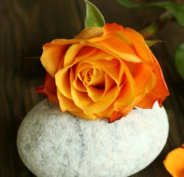 Τι συμβολίζουν τα τριαντάφυλλα (2)