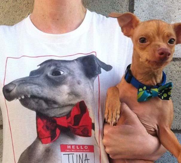 Tuna: Ο διάσημος «άσχημος» σκύλος (17)