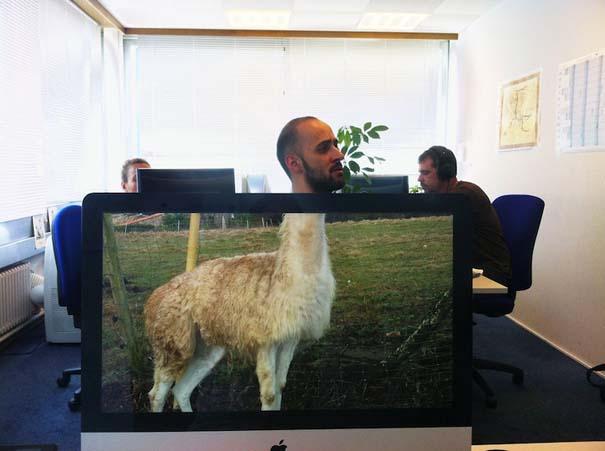 Desk Safari: Παίζοντας με τους συναδέλφους στο γραφείο (6)