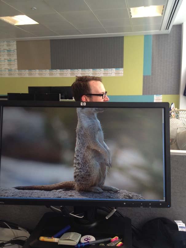 Desk Safari: Παίζοντας με τους συναδέλφους στο γραφείο (11)