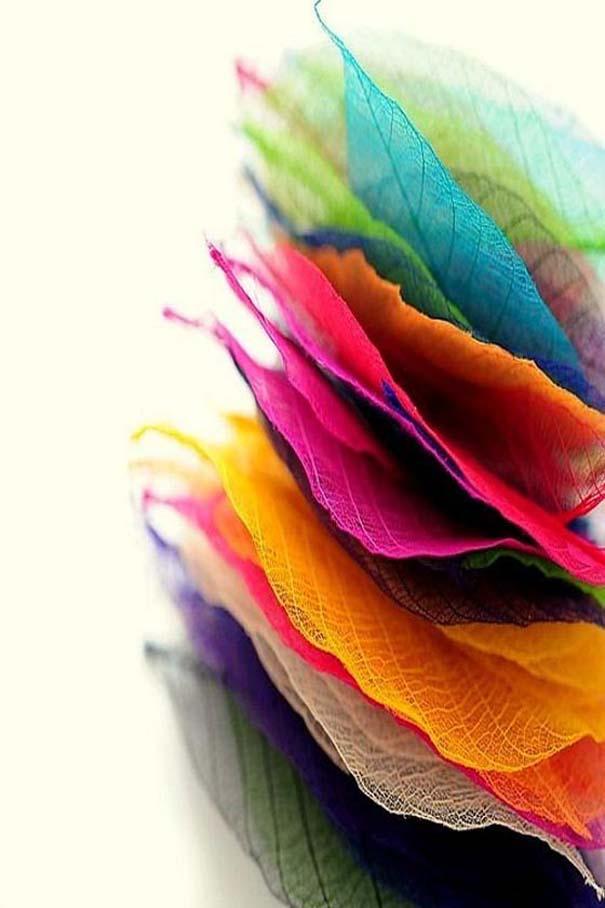 Υπέροχες φωτογραφίες στα χρώματα του ουράνιο τόξου (20)