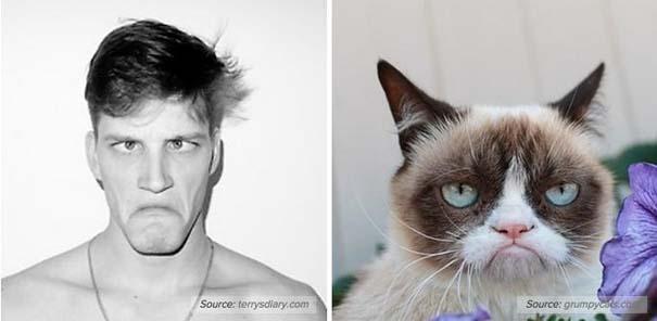 Γάτες αναπαριστούν πιερίεργες πόζες μοντέλων (11)