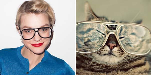 Γάτες αναπαριστούν πιερίεργες πόζες μοντέλων (21)
