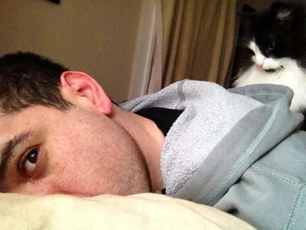 Γάτες που σχεδιάζουν την δολοφονία σου (8)