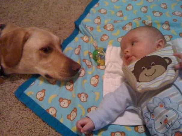 Καρέ καρέ η εξέλιξη μιας ξεχωριστής φιλίας (4)