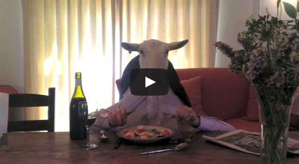 Κατσίκα με χέρια απολαμβάνει το δείπνο της σαν άνθρωπος