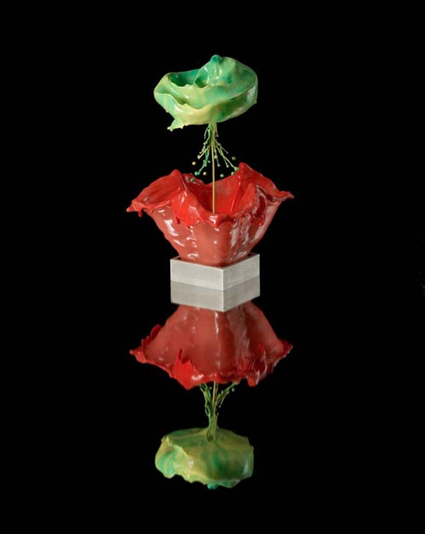 Καλλιτέχνης δημιουργεί λουλούδια από παφλασμούς χρωματισμένου νερού (6)
