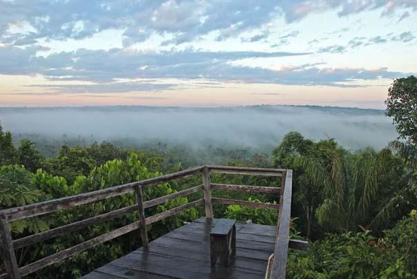 Μαγευτική φωτογραφική περιήγηση στα δάση του Αμαζονίου (15)