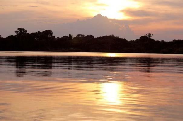 Μαγευτική φωτογραφική περιήγηση στα δάση του Αμαζονίου (16)