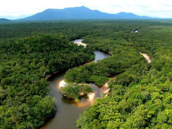 Μαγευτική φωτογραφική περιήγηση στα δάση του Αμαζονίου (23)