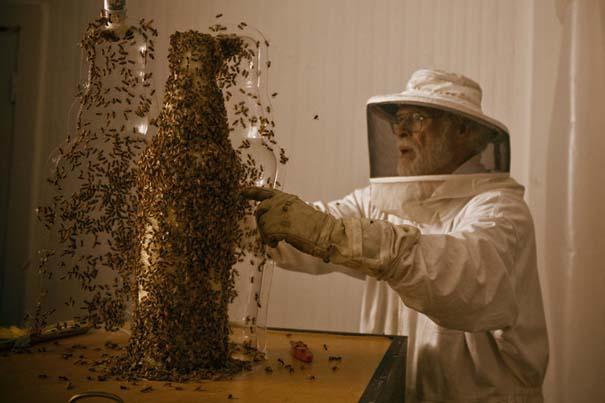 Μέλισσες σε ρόλο 3D εκτυπωτή (1)