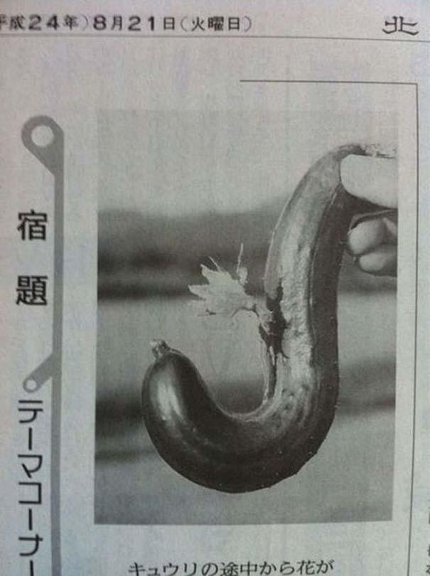 Μεταλλαγμένα προϊόντα από την Φουκουσίμα (12)