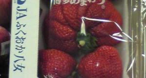 Μεταλλαγμένα προϊόντα από την Φουκουσίμα