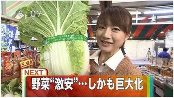 Μεταλλαγμένα προϊόντα από την Φουκουσίμα (26)