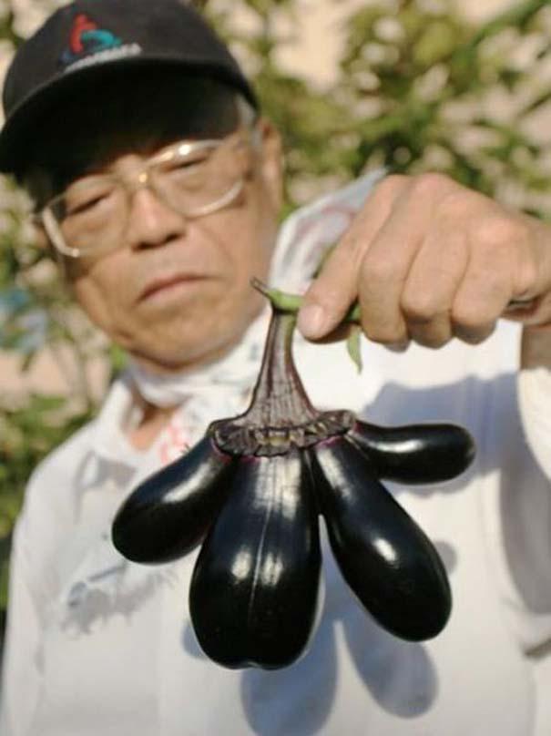 Μεταλλαγμένα προϊόντα από την Φουκουσίμα (34)