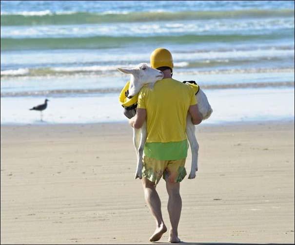 Παράξενα και τραγελαφικά σκηνικά στην παραλία (15)