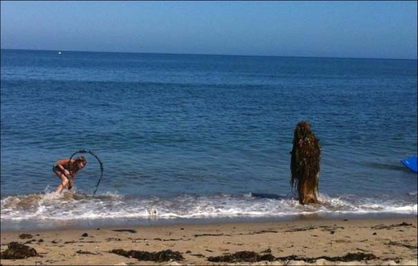 Παράξενα και τραγελαφικά σκηνικά στην παραλία (13)