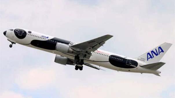 Πρωτότυπες και εντυπωσιακές βαφές αεροσκαφών (18)