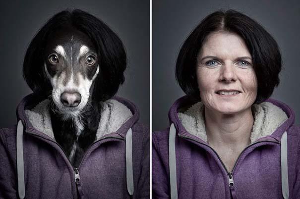 Σκύλοι φωτογραφίζονται με τα ρούχα του ιδιοκτήτη τους (2)