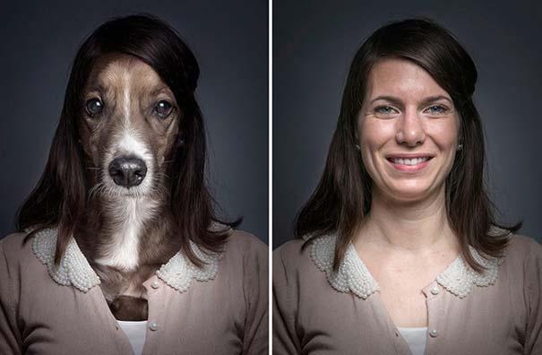 Σκύλοι φωτογραφίζονται με τα ρούχα του ιδιοκτήτη τους (3)