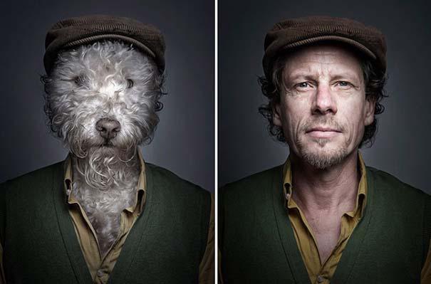 Σκύλοι φωτογραφίζονται με τα ρούχα του ιδιοκτήτη τους (4)