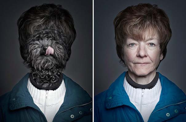 Σκύλοι φωτογραφίζονται με τα ρούχα του ιδιοκτήτη τους (5)