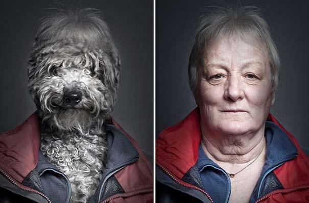 Σκύλοι φωτογραφίζονται με τα ρούχα του ιδιοκτήτη τους (6)