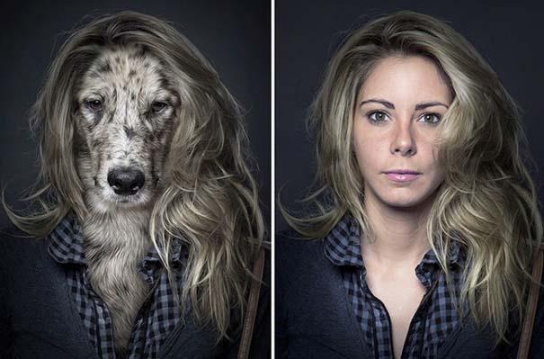 Σκύλοι φωτογραφίζονται με τα ρούχα του ιδιοκτήτη τους (7)