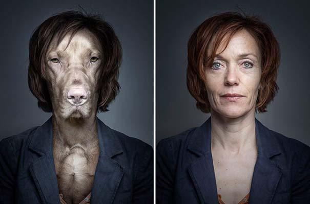 Σκύλοι φωτογραφίζονται με τα ρούχα του ιδιοκτήτη τους (8)