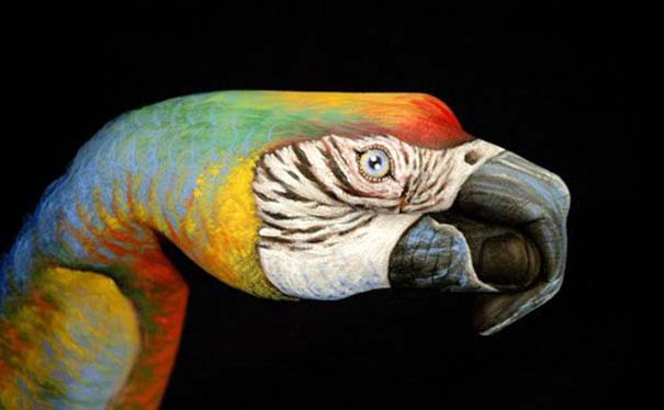 Απίστευτες ζωγραφιές ζώων σε ανθρώπινα χέρια (23)