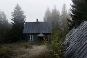 Εγκαταλελειμμένο σπίτι στο δάσος έχει αποκτήσει ενδιαφέροντες νέους κατοίκους (1)