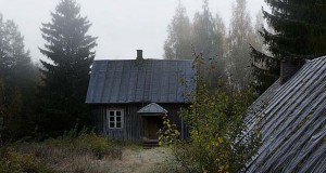 Εγκαταλελειμμένο σπίτι στο δάσος έχει αποκτήσει ενδιαφέροντες νέους κατοίκους