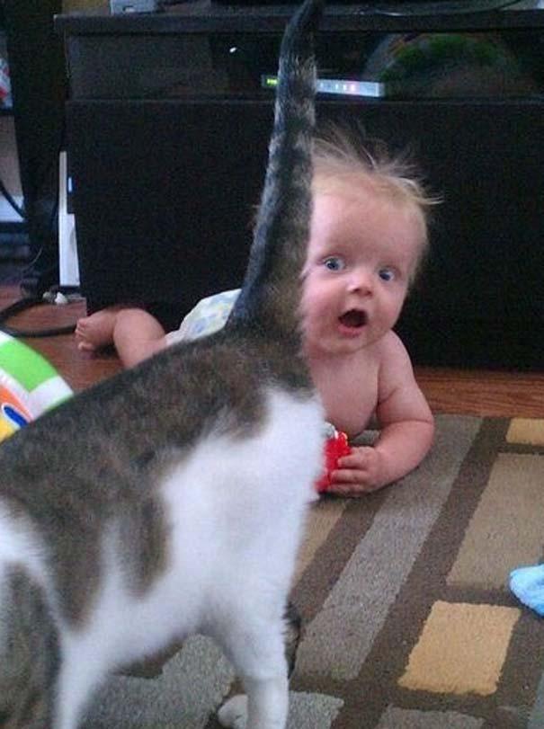 Μωρά κάνουν Photobombing (4)