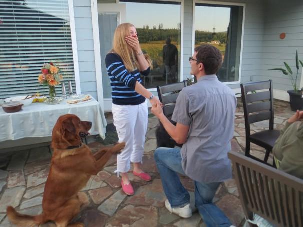 Πρόταση γάμου με... βοηθό | Φωτογραφία της ημέρας